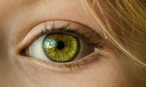 Augen-Coaching