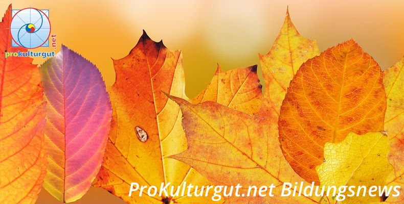 Bildungsnewsletter des Prokulturgut.net e.V.